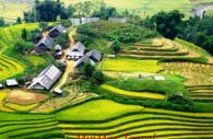 Sapa And Halong Holiday