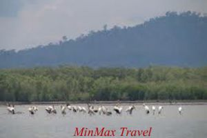 Angkor Trekking To Sihanouk Ville 8 Days / 7 Nights