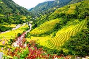 Discovery The North Of Vietnam