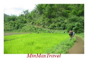 Chiang Mai Escape Tour